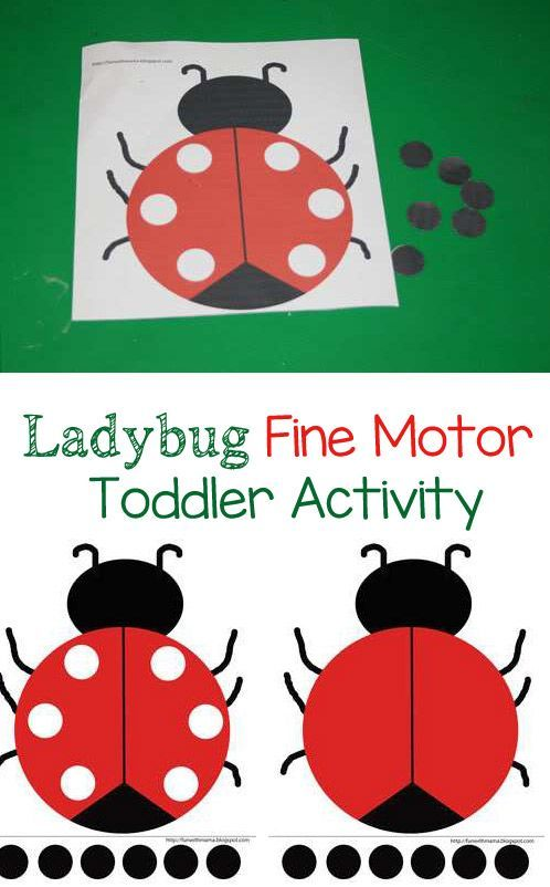 Ladybug Fine Motor Toddler Activity Motor Skills