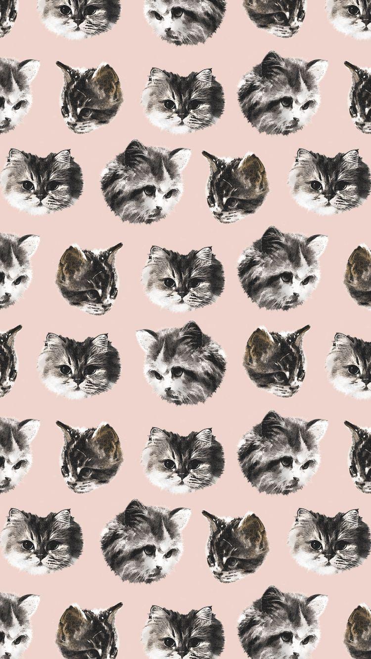Wallpaper Cat1712 Iphone Jpg 750 1 334ピクセル 猫の壁紙 くまイラスト 壁紙 イラスト