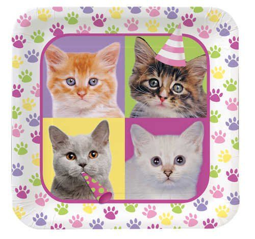 Creative Converting Purr-Ty Time Square Dinner Plates, 8-Count ♥