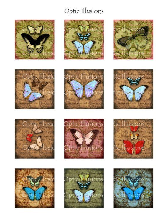 Old World Butterfly Collection  2 Pages  INSTANT por opticillusions