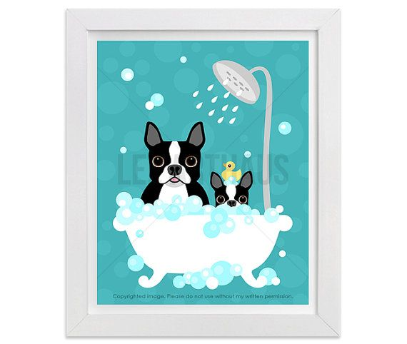 538d Bathroom Art Boston Terrier Dog And Puppy In Bubble Bath