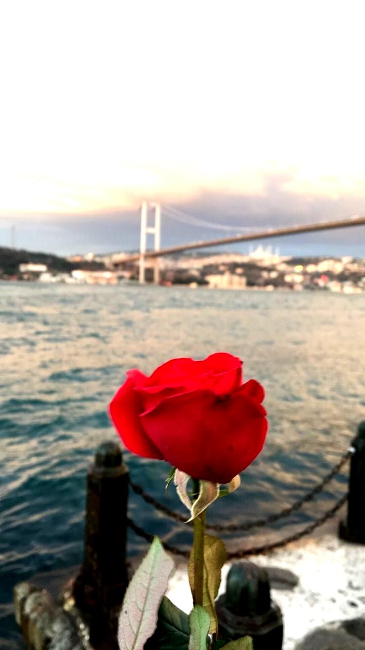 7 Tumblr Istanbul Tumblr Istanbul Tumblr En 2020 Photographie De Paysages Photographe Nature Idee Photo Insta