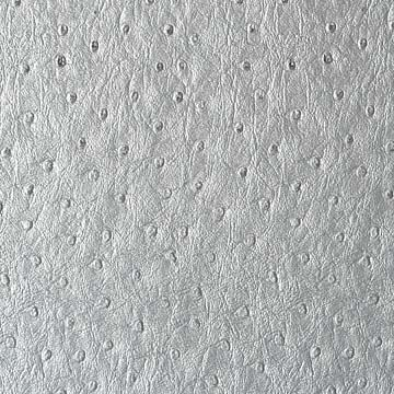 silver1.jpg 360×360 pixels