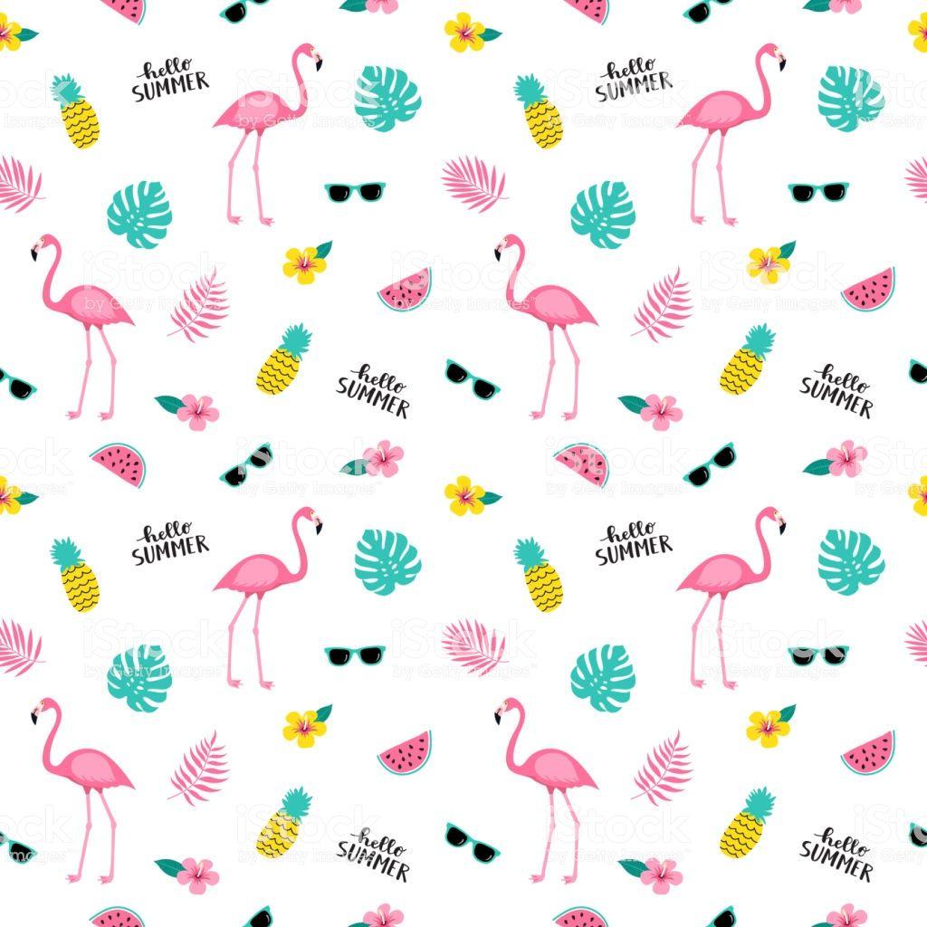 Vector Illustration Flamingos Desenho Flamingo Vetores