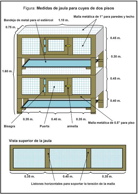 Alternativa ecol gica jaulas para cuyes conejitos for Como hacer un criadero de cachamas