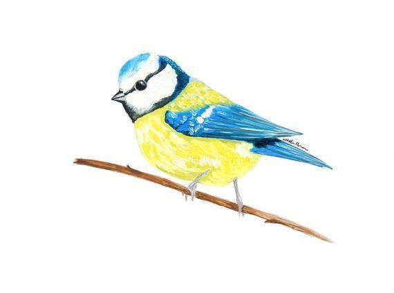 Blue Tit Cushion, Garden Bird, Personalised Pillow, White Cotton, Woodland Animals, Birthday Gifts f