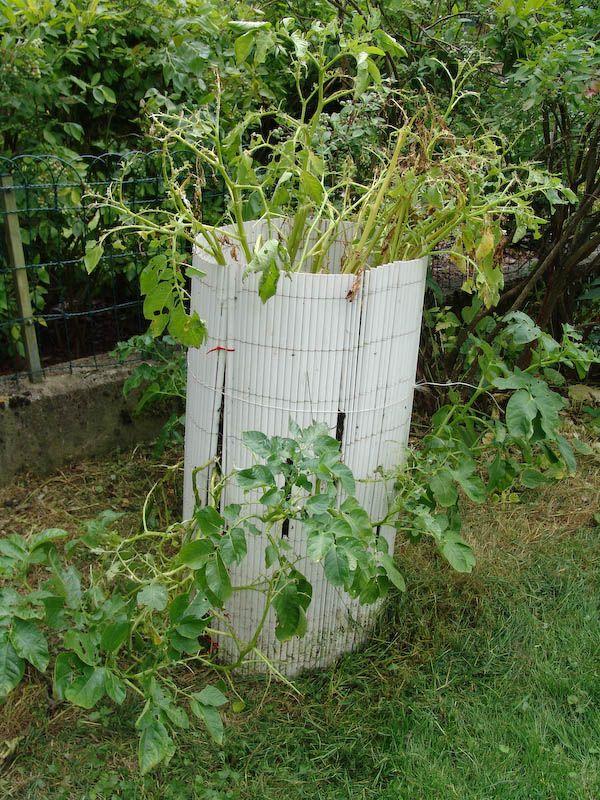 kartoffelturm garten und co pinterest kartoffeln anbauen garten anpflanzen und garten. Black Bedroom Furniture Sets. Home Design Ideas