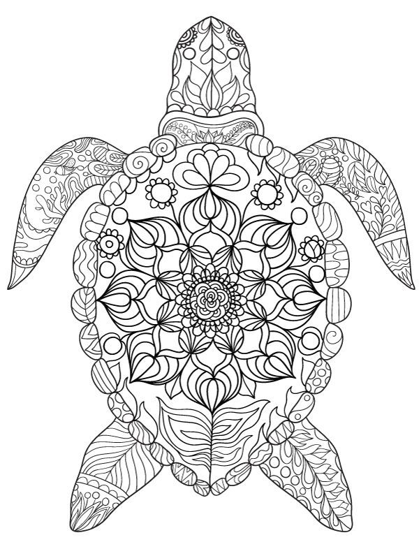 sea turtle adult coloring page