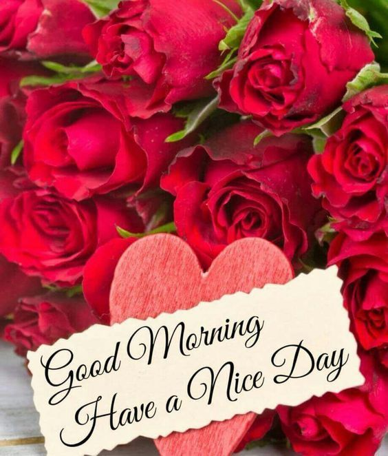 Good Morning Have A Nice Day Flowers Morning Quotes Good