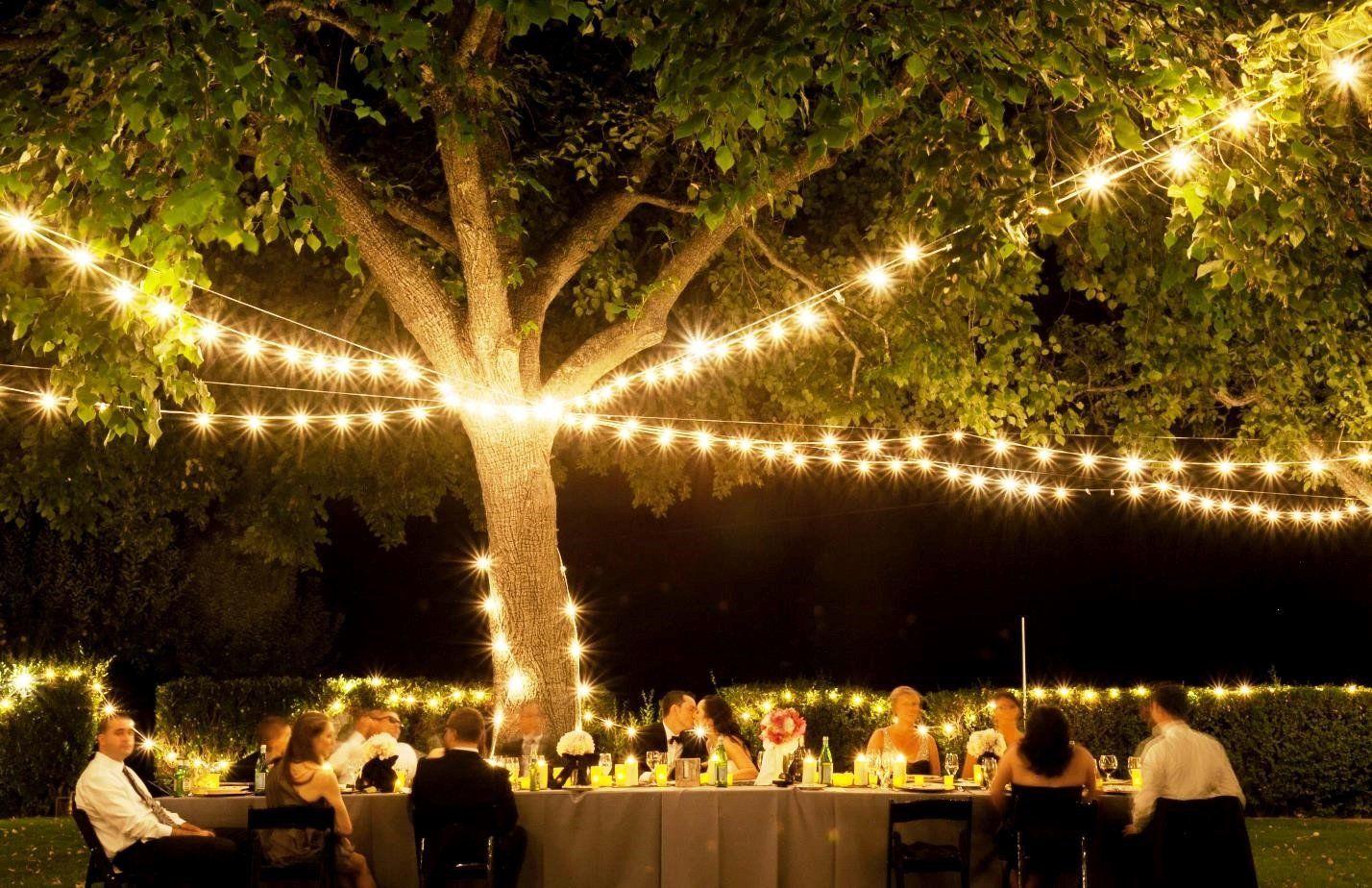 Tree Decoration For Weddings Luxury Cheap Wedding Lighting Ideas Tree Wedding Party In 2020 Outdoor Wedding Lighting Night Wedding Reception Wedding Reception Lighting