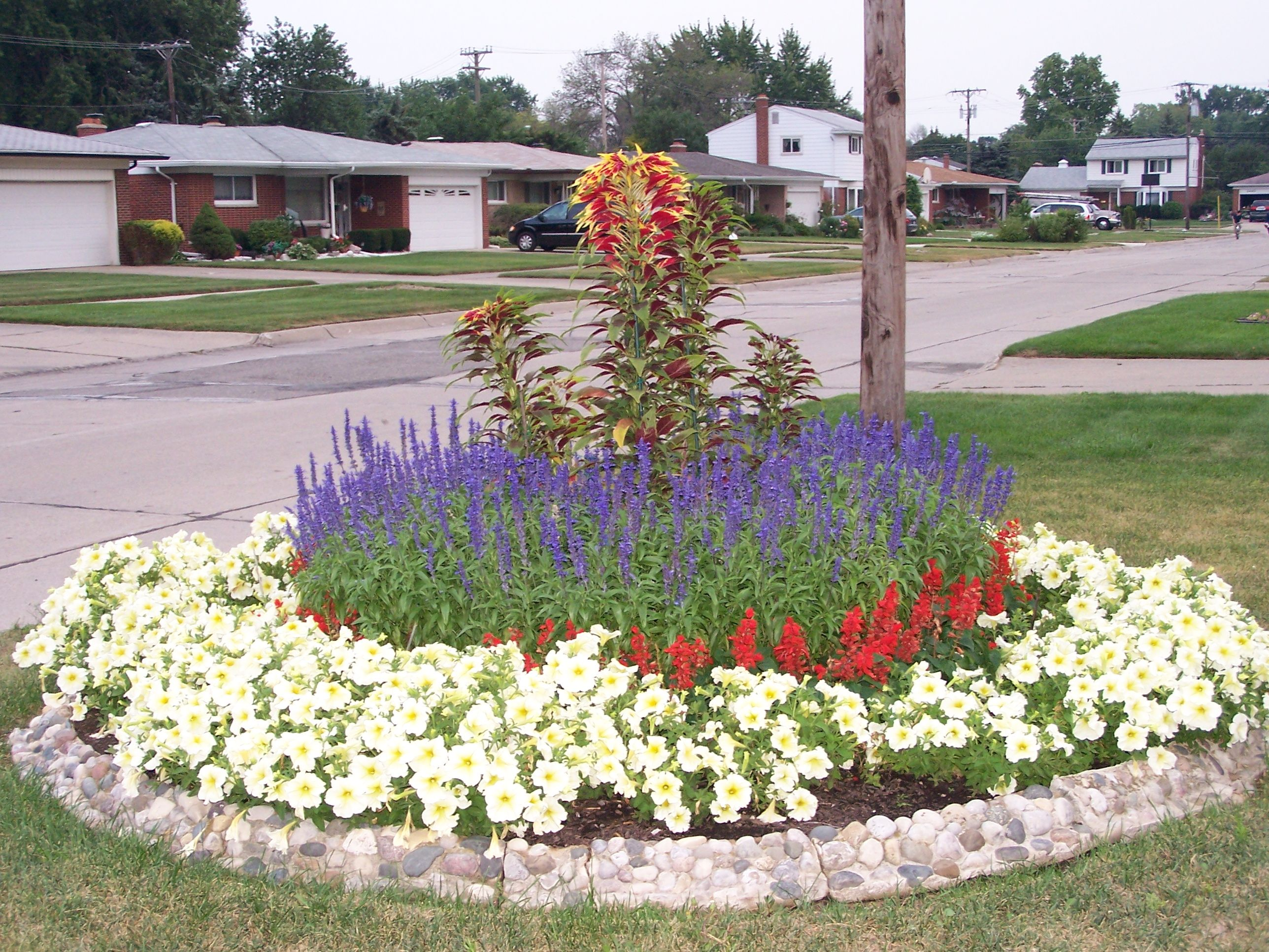 Blue Red Salvia Yellow Petunia Stone Flower Bed Border Stone Flower Beds Front Yard Garden Front Yard