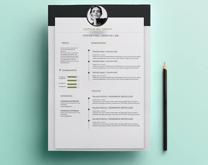 Professional  Modern Resume Template  Cv Template  Professional