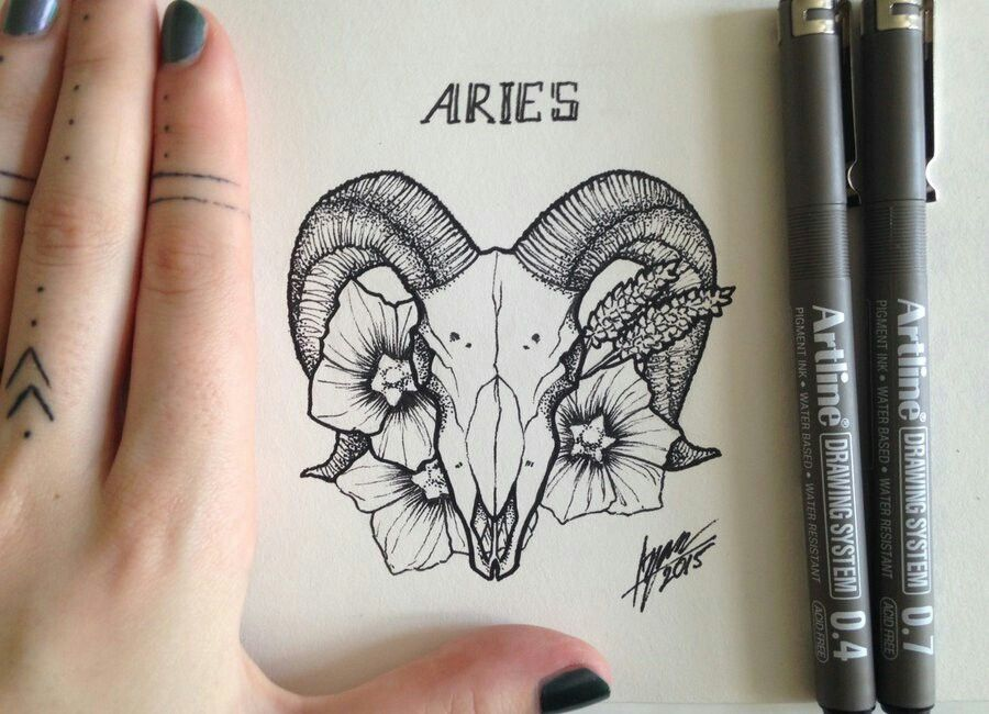 Photo of Without the aries part on the top