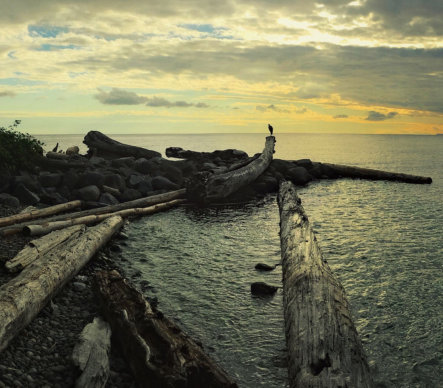 Vancouver Bc Beaches: Wreck Beach At Dusk, Vancouver, BC [1450 X 1271]