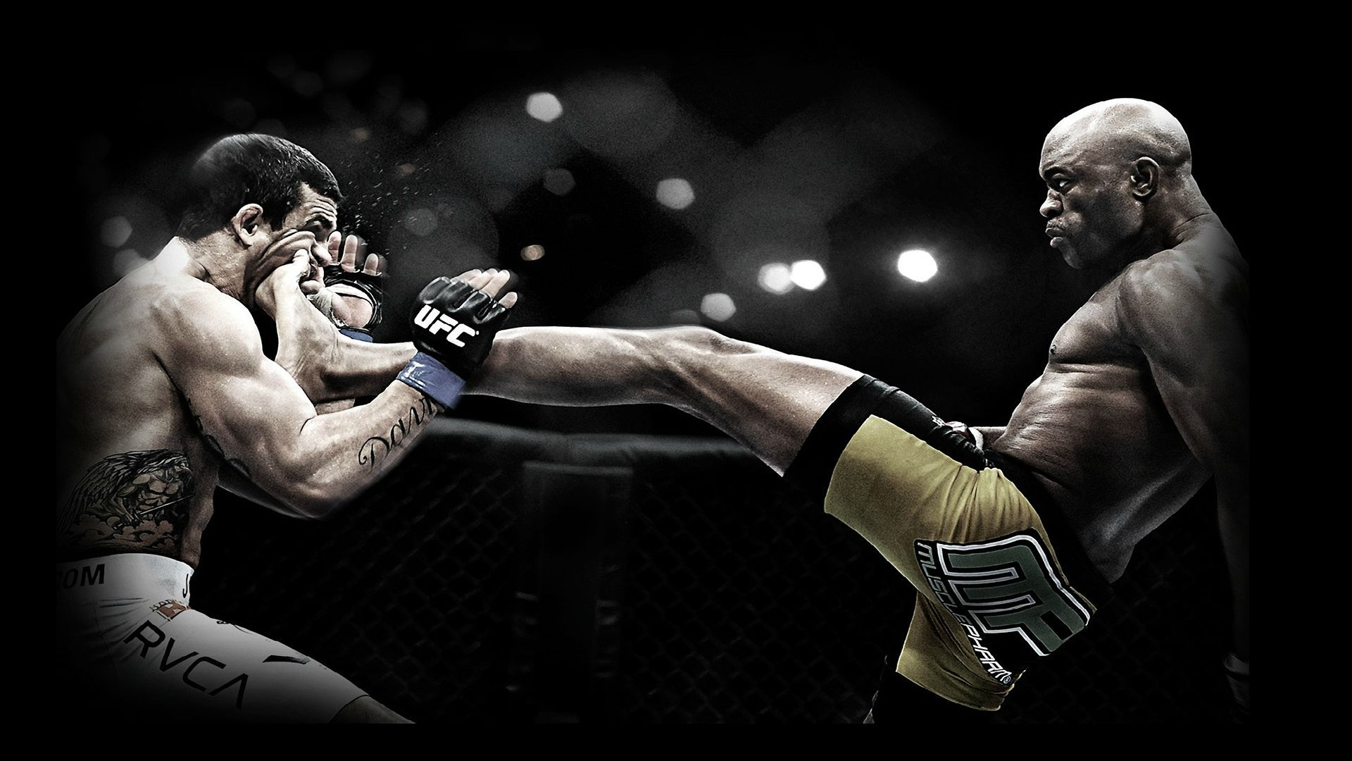 Kick Box Fight Picture For Desktop With Images Ufc Fighters