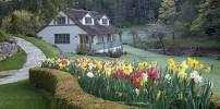 hasting house hotel - Szukaj w Google