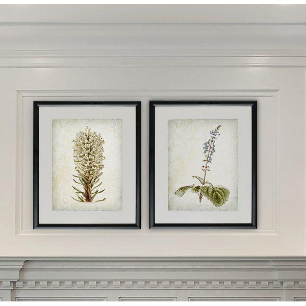 Flower Paintings And Botanical Wall Art Birch Lane