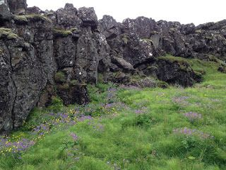 Di tutto e di più sulla Sardegna di Giurtalia e tanto altro ancora.: Viaggio in Islanda - VIII parte - La Pompei del No...