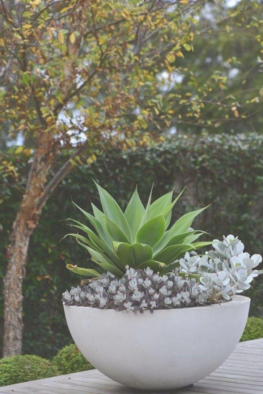 44 Inspiring Outdoor Potted Plant Entryway Ideas 96 Garden