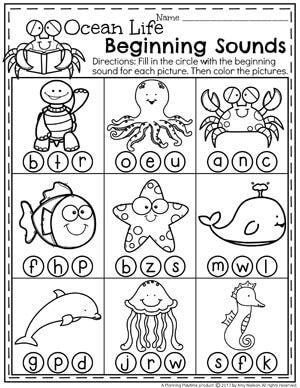 Summer Preschool Worksheets | Pinterest | Worksheets, Summer and Ocean