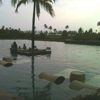 The infinity pool at Alila Diwa Goa