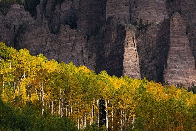 8 Tips for Fall Landscape Photography Vintage Photography Idea