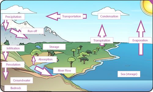 Met office education education pinterest met office geography find this pin and more on education by glwhite327 the water cycle ibookread PDF