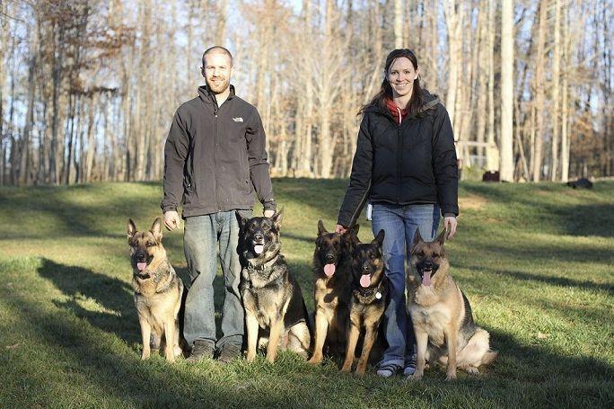Triad K9 Winston Salem North Carolina German Shepherd Kennels