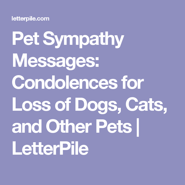 sympathy card messages examples for pets giftsite co