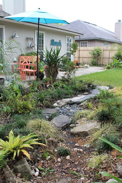 Pin by Jen Jad on Gardening in Florida | Dry creek, Dry ...
