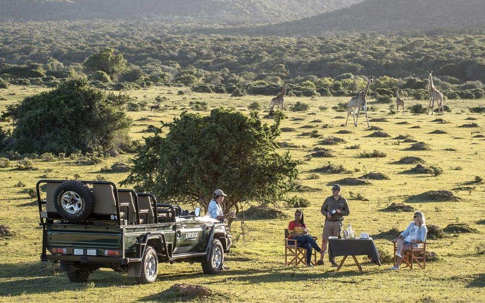 Kenton on Sea – luksuriøst safari resort er til salg