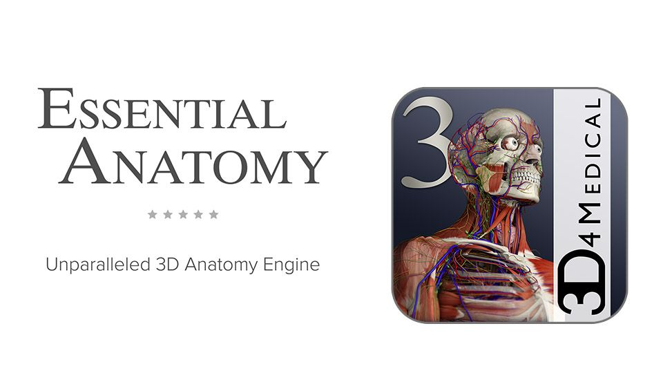 Essential Anatomy 3D4Medical Apps is extremely helpful with diagrams ...