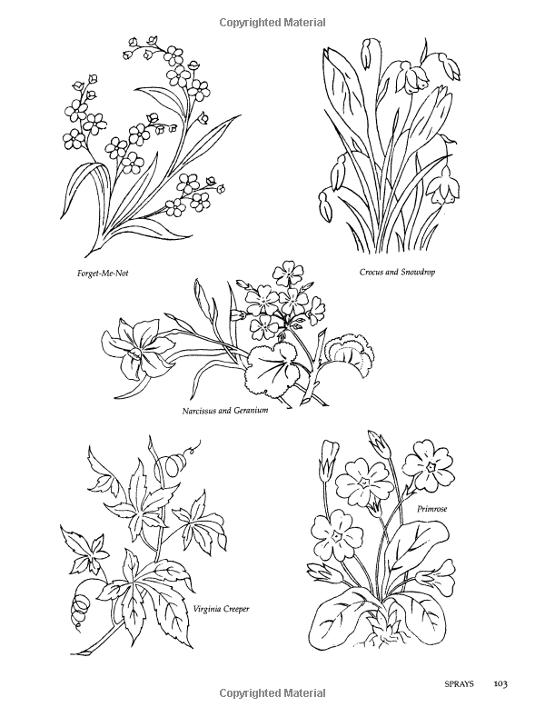 400 Floral Motifs for Designers, Needleworkers and