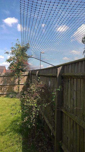 Protectapuss Garden Barriers For Cat Owners With Existing Perimeter Fencing For The Garden Pinterest Fences Cat And Gardens