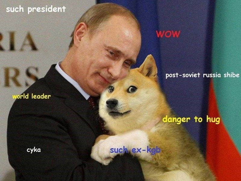 16 Putin Memes That Ll Make You Vlad You Clicked In 2020 Doge Meme Dog Jokes Russian Memes