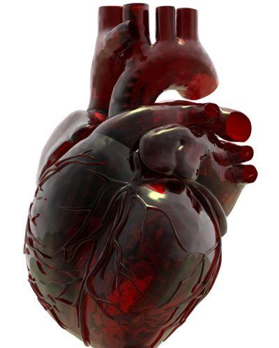 heart8.jpg (400×500)