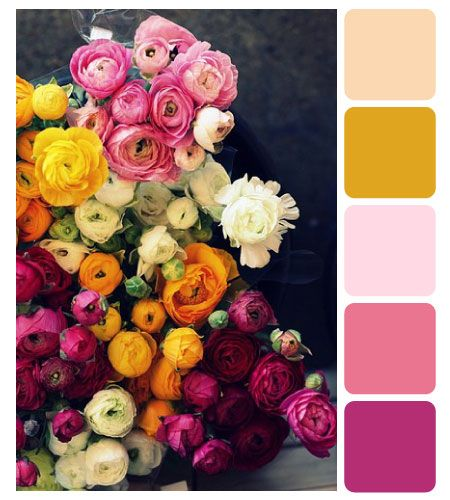 Summer flower - peach, orange, pink, magenta, white