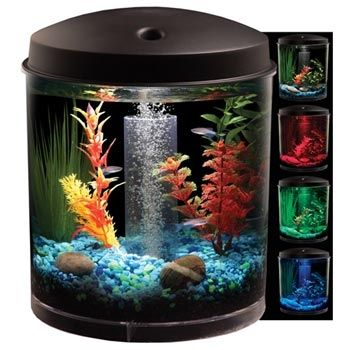 Petco 360 View Aquarium Kit Small Fish Tanks Aquarium Kit