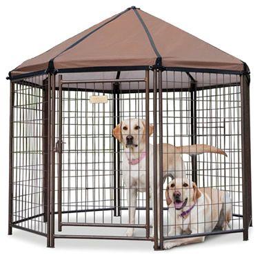 The Dog Gazebo Awesomesauce Outdoor Dog Dog Playpen Dog Cages