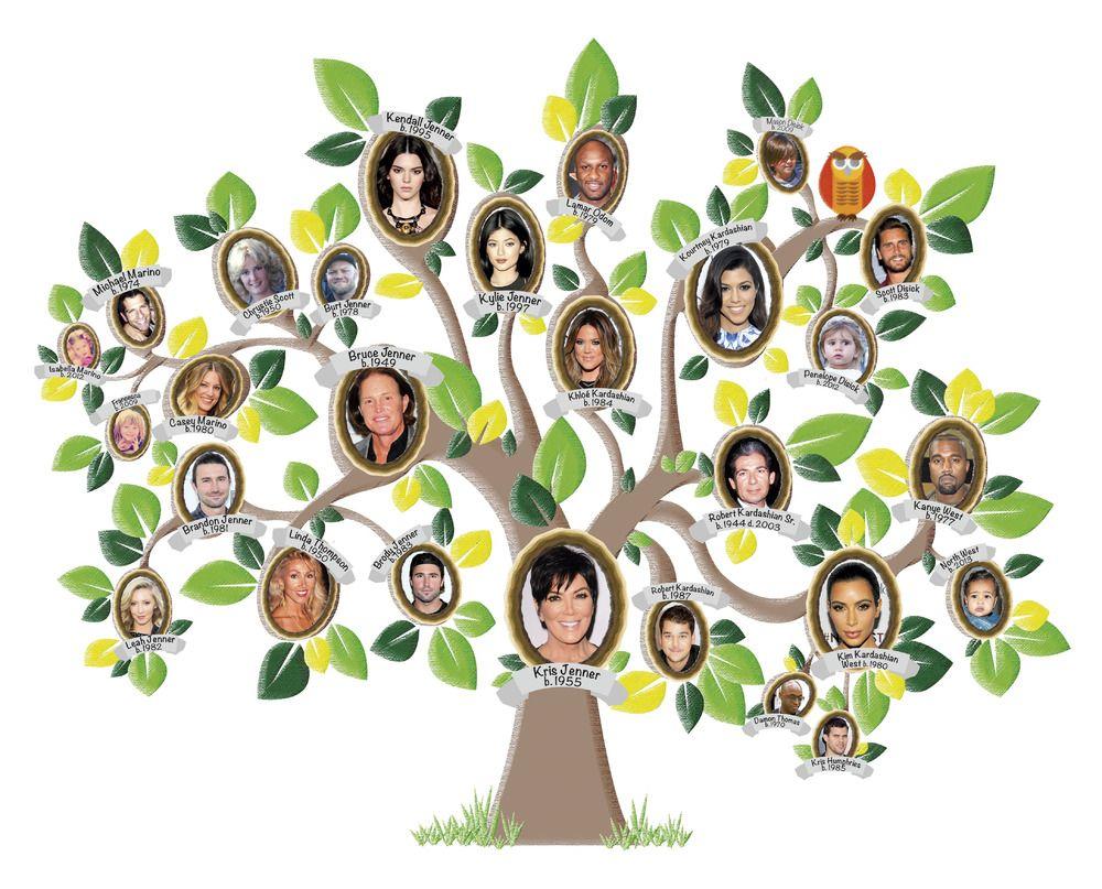 The kardashians famille kardashian kim kardashian - Arbre genealogique stickers ...
