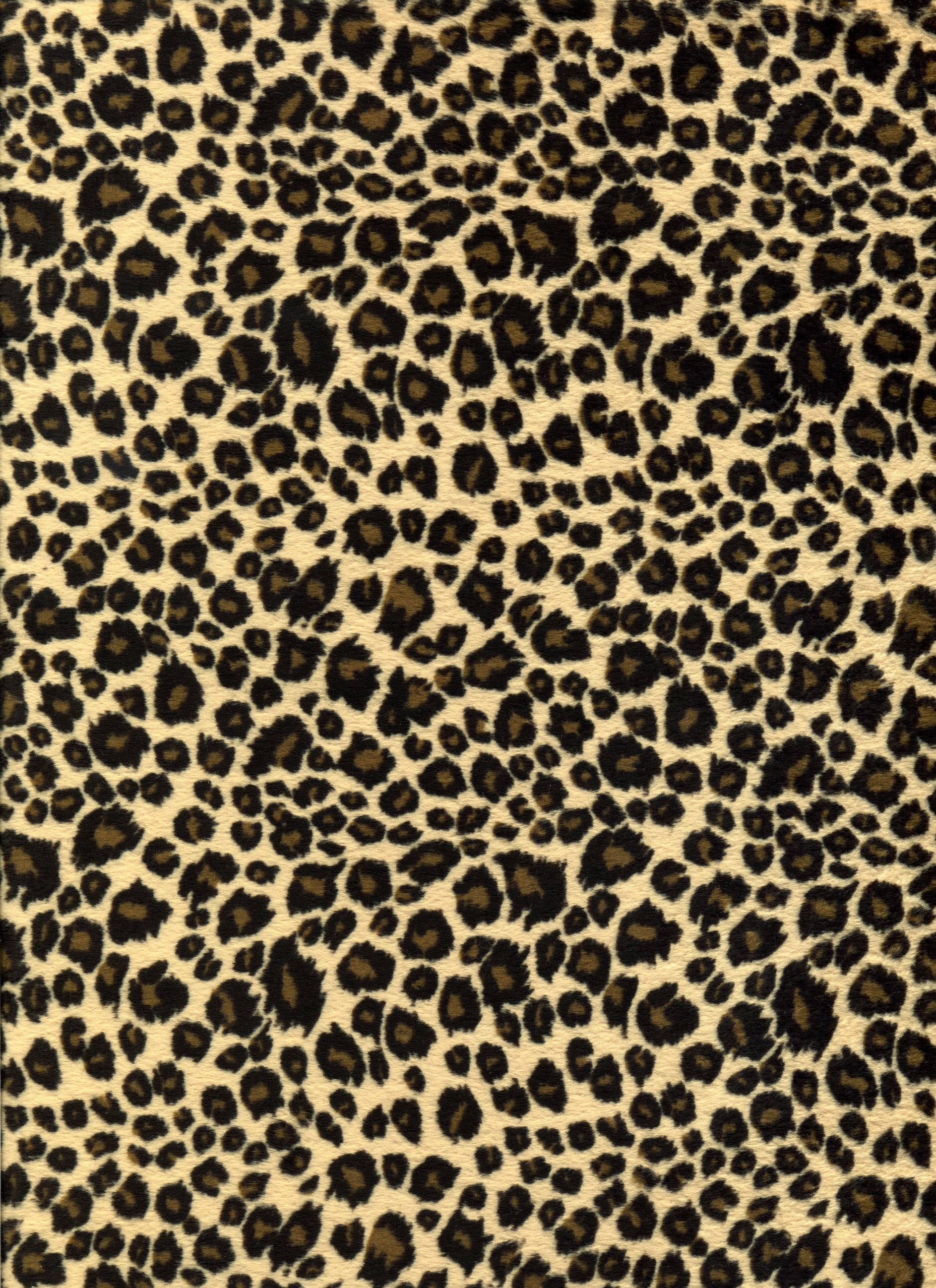 Loving The Leopard Print Patterns