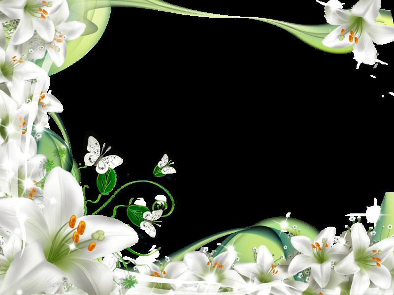 Fondo Primavera álbum Classic Flor Y Estrellas: Flores-blancas.png (800×600)