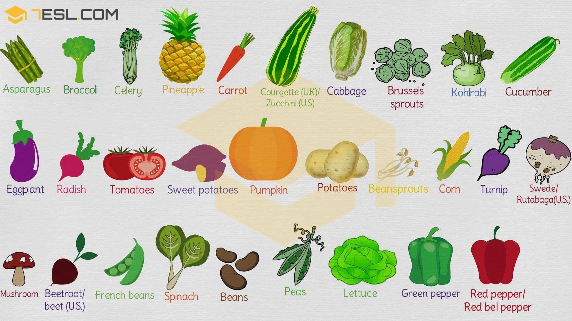 List Of Vegetables: Useful Vegetables Names In English ...