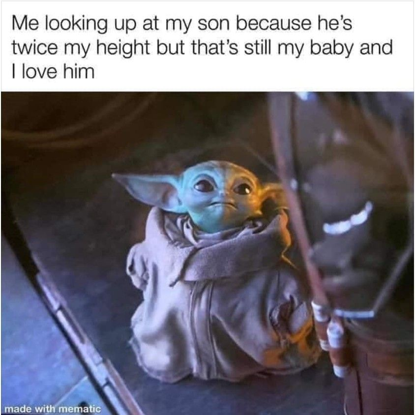 Pin By Silvia On Quotes Humor 2 Yoda Funny Yoda Meme Funny