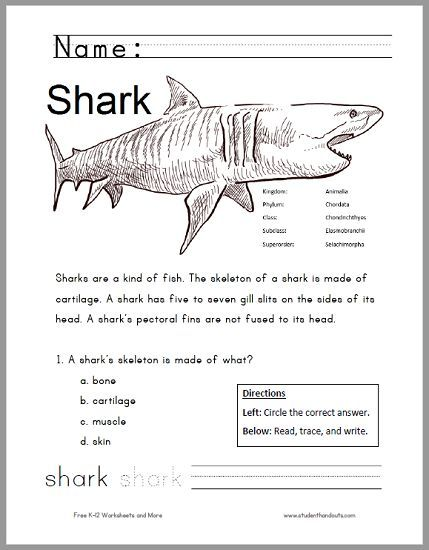Free Printable Shark Worksheet for Grades 1-3 - Kids read the - copy coloring page of a tiger shark