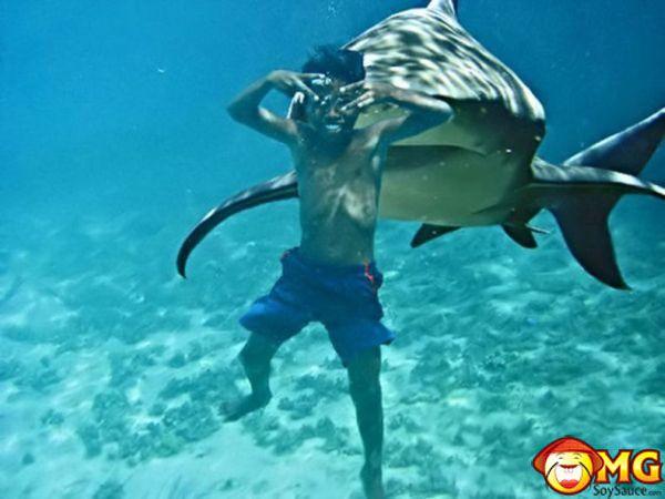 Flip the Script: Is it Fair to Call Them Shark Attacks? | Shark Week | Discovery