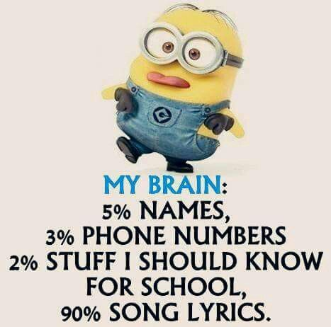 Actually its 1% school and 1% phone numbers. And 93% for song lyrics (With images)  Minion