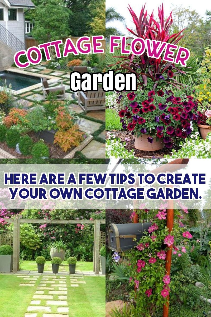 Maintain A Lovely Garden With These Great Tips Easy Garden Backyard Garden Diy Backyard Garden Landscape Backyard garden what to grow