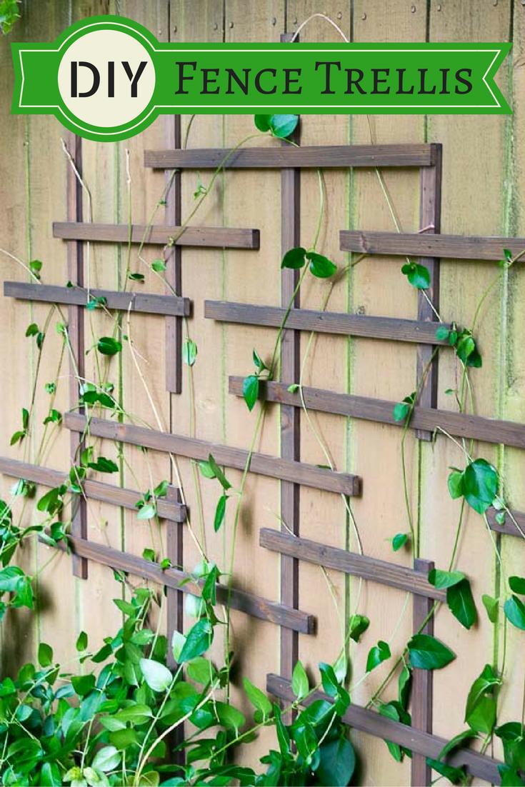 Garden decor trellis  DIY Fence Trellis  Living walls Fences and Gardens