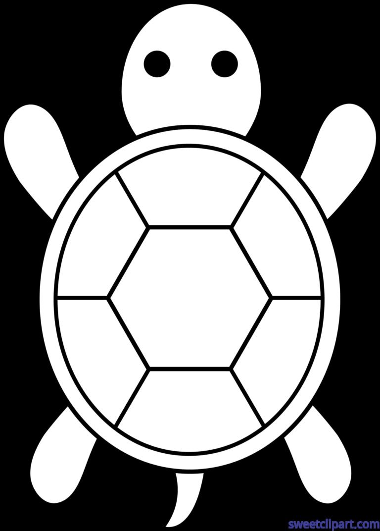 turtle lineart clip art baby shower ideas pinterest clip art rh pinterest com au